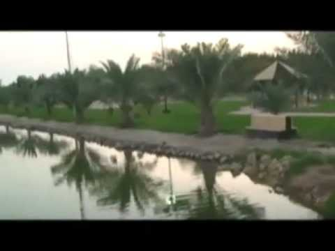 Kuwait Oasis in Burgan Oil Field 29th May 2012
