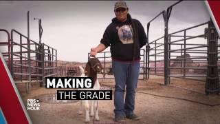 How a hands-on high school veterinary program is enriching Navajo students