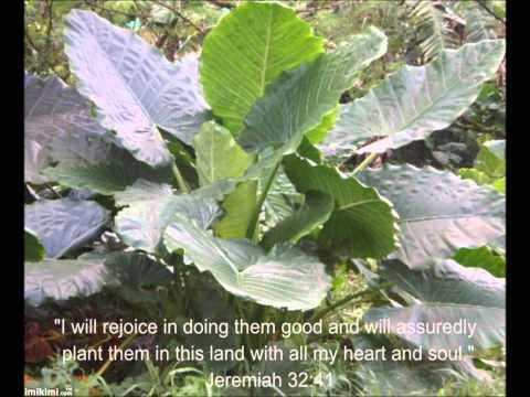 GUAM and SCRIPTURE PICTURES