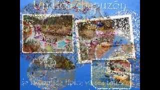 Video Cascadas en Agua Blanca de Iturbide Hidalgo download MP3, 3GP, MP4, WEBM, AVI, FLV Oktober 2018
