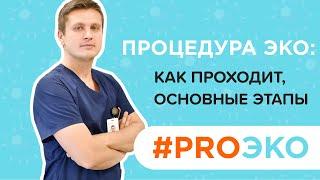Процедура ЭКО: как проходит, основные этапы   Репродуктолог Виталий Радько