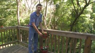 How To Install Bird Feeders On Your Deck