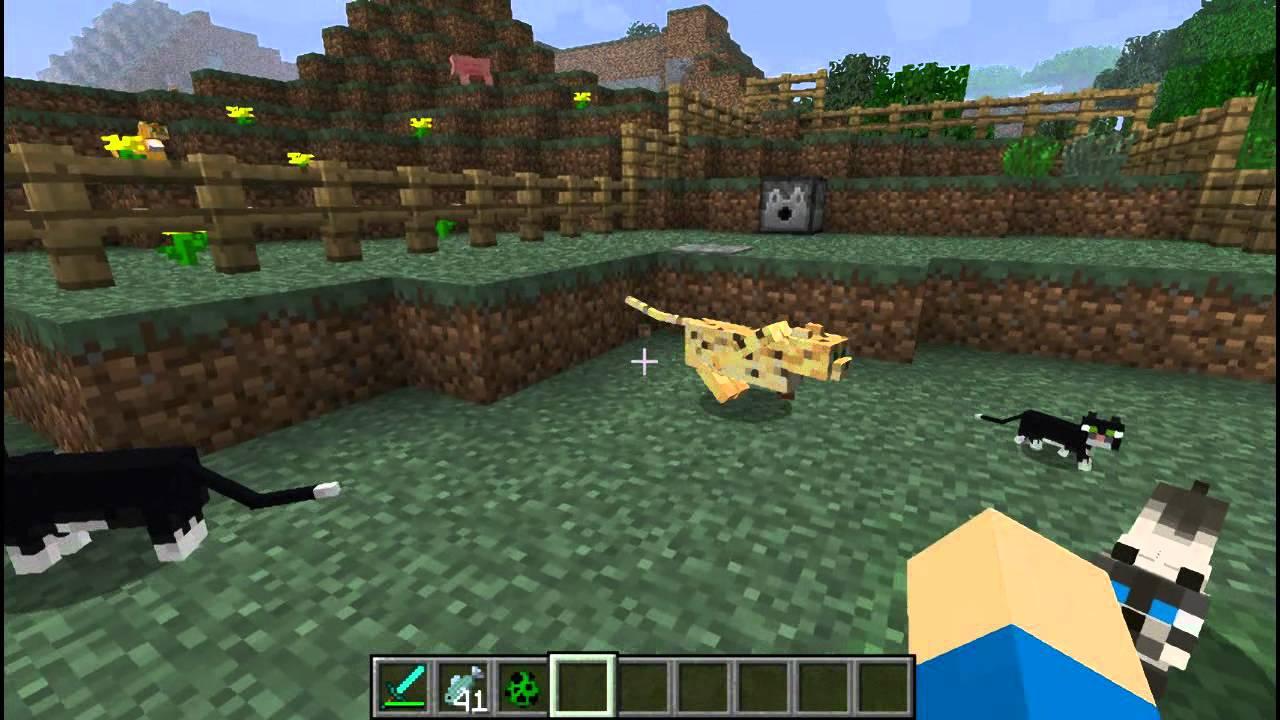 Minecraft Ocelot Jak Oswajać Jak Rozmnażać Zastosowania Pl