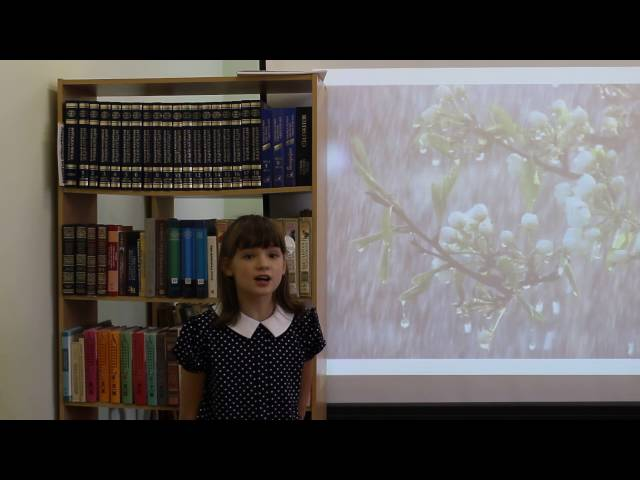 Изображение предпросмотра прочтения – ВалерияЗаливалова читает произведение «Майский дождь» В.Я.Брюсова