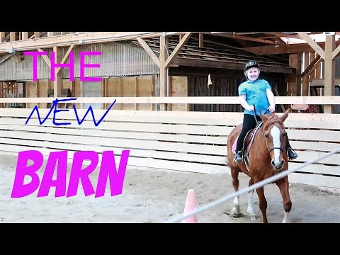THE NEW BARN! Day 100 (04/10/17)