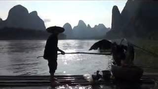 China. Fishing travel. Cormoran. Китай. Рыболовные путешествия. Рыбалка с дрессированным бакланом.