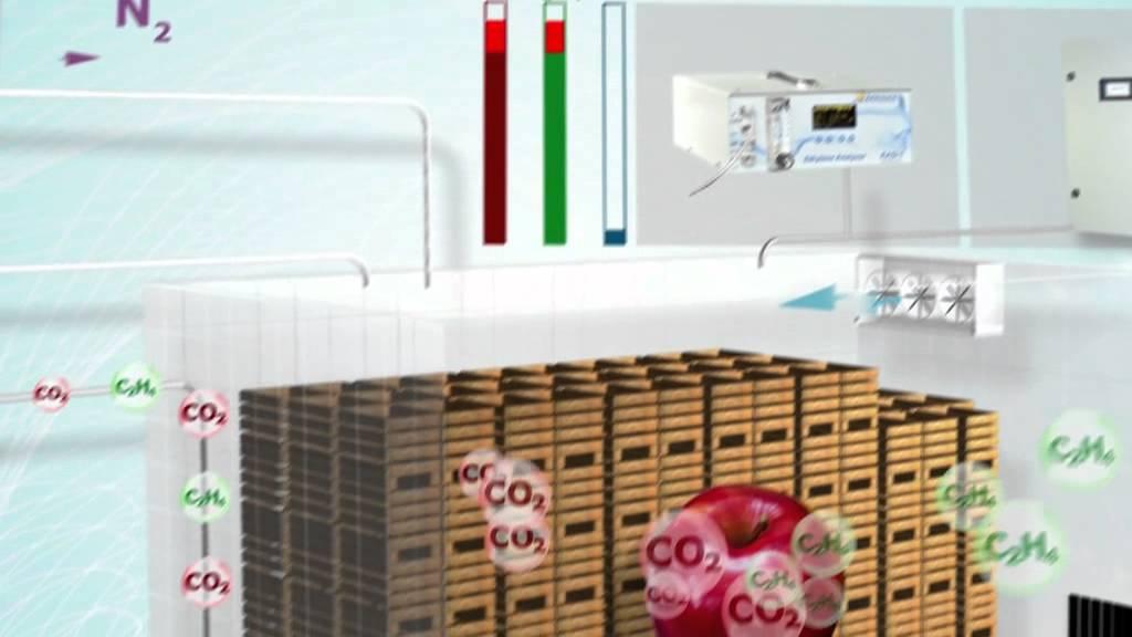 national pneumatic conservation des fruits et l gumes en. Black Bedroom Furniture Sets. Home Design Ideas