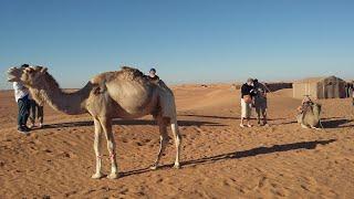 Morocco.Sahara Tours Day 3 :  erg lihoudi to erg chegaga.