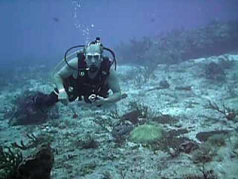 The Scuba Sports Club's Reef Dive in Cozumel 2009