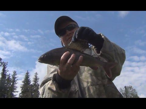 Рыбалка онлайн видео - смотрите видео о рыбалке бесплатно
