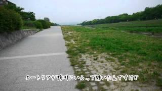 激闘! 京都・鴨川ヌートリアを追う(プTV)