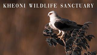 Kheoni Wildlife Sanctuary  | The Land Of Hope