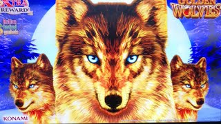 🔴 LIVE FROM THE CASINO ★ BIG WINS AHEAD! ★ GOLDEN WOLVES ★ BUFFALO GOLD ★ AND MORE!