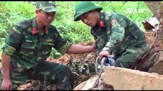 VTC14 | Quảng Nam: tìm thấy thi thể công nhân bị chôn vùi