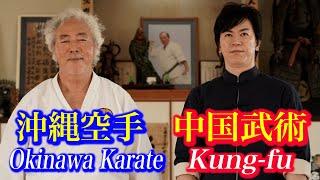 宮平保(中国武術)と八木明達(沖縄剛柔流空手 十段)が技の交流!Meitatsu Yagi ( Okinawa Karate) and Tamotsu Miyahira (Kung-fu)