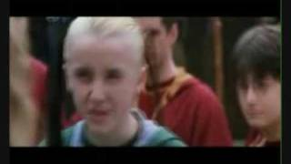 Draco Malfoy: The Hamster Dance Song