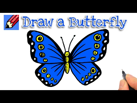 How to draw a butterfly real easy for kids and beginners