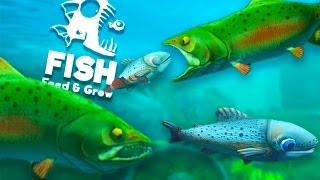 ŁOSOŚ RZECZNY JEST NIEBEZPIECZNY?! | Feed and Grow: Fish
