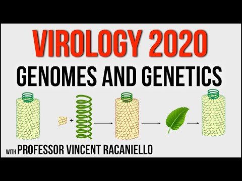 Virology Lectures 2020 #3: Genomes and Genetics