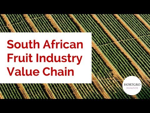 South African Fruit Industry Value Chain