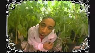 Ludacris - Blueberry Yum Yum  (Feat. Sleepy Brown) (HD) 2004
