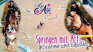 Lia & Alfi - Springen mit Alfi und Equilab - Aufnahmen mit Drohne