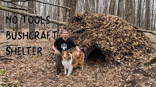 Building a Bushcraft Shelter WITHOUT TOOLS and Sleeping in it