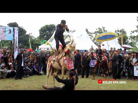 Kuda Silat Sumedang Beraksi dalam Festival Kuda Renggong Terbesar [HD]