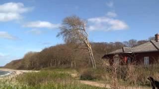 Kite Surfing på Langeland