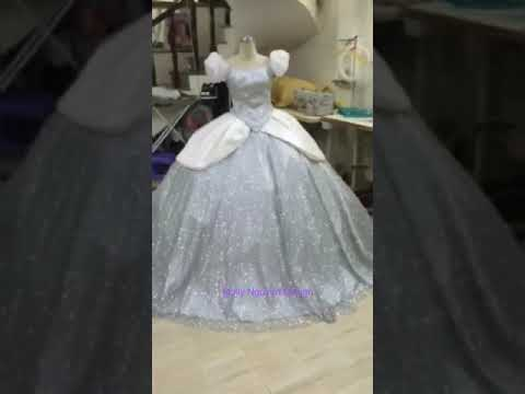 Silver Cinderella Adult Dress With Sparkly fabric