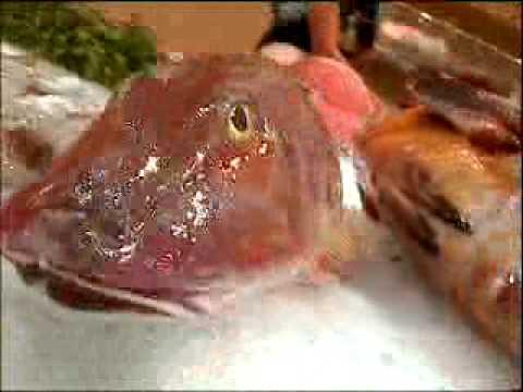 Fish mr scruff lyrics