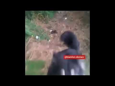 Видео lacklist.nikolaev: Николаевец