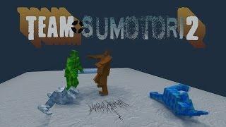 Team Sumotori 2