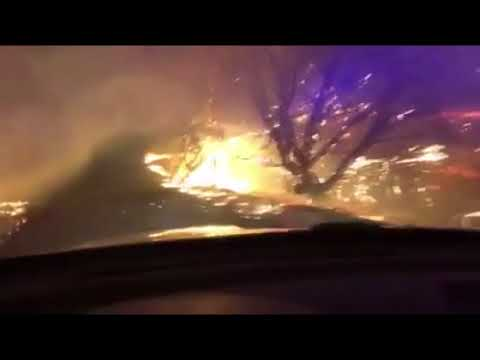 Sonoma County sheriff's deputy drives through heart of fire
