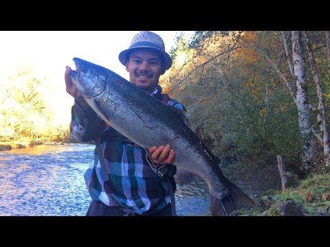 OREGON, COHO/STEELHEAD RIVER FISHING