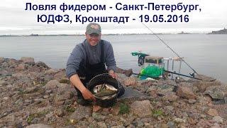Ловля фидером - Санкт-Петербург, ЮДФЗ, Кронштадт - 19.05.2016