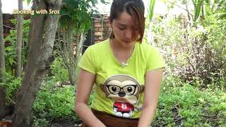 Yummy Beef Stir Fry Recipe   Beef Stir Fry Cooking   Cooking With Sros