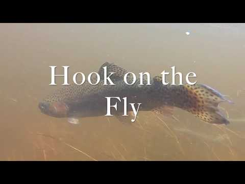 Fly Fishing The Upper Owens River
