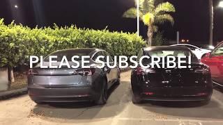 Tesla Model 3 ALL Colors (Black, Red, Blue, Silver, White, Gray) Closeup - Walk Around