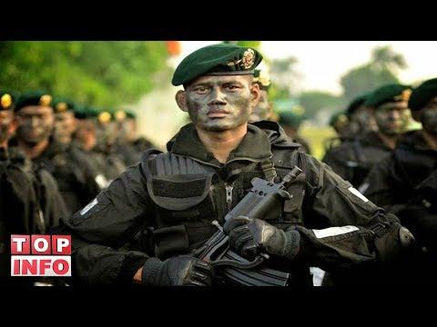 5 PASUKAN ELIT TNI YANG TIDAK DIKENAL TAPI MEMATIKAN DAN SANGAT DITAKUTI DUNIA