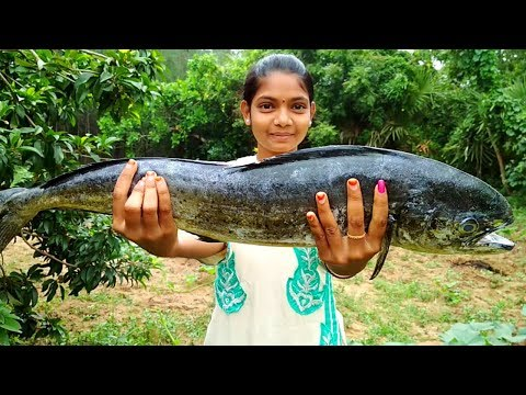 Monster Fish Curry Cooking & Tasting By Village Girl – Different Fish Recipe – Village Food 2017