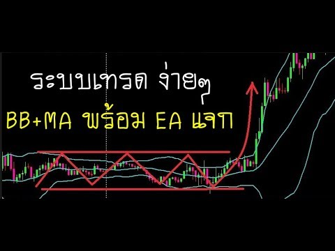 Ea superwin forex thai