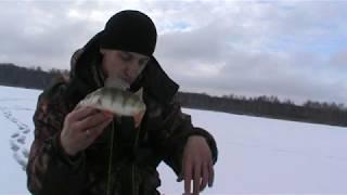 Зимняя рыбалка база Пудыши 01 02 2020 Пробуем первый лед Чуть не лишился удочки