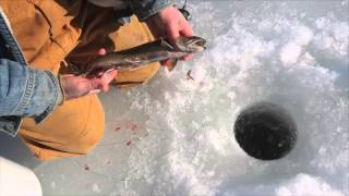 Ice Fishing Catch and Cook