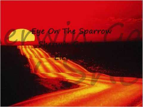 Eye on the sparrow- Sherwin Gardner