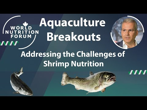 WNF 2016 Aquaculture Breakouts: 04 Addressing the Challenges of Shrimp Nutrition