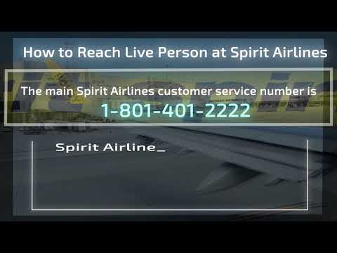 How to Reach Live Person at Spirit Airlines