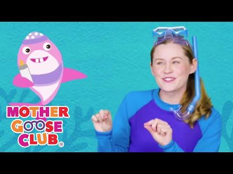 Baby Shark Song   Music Box   Lullaby   Mother Goose Club Songs for Children Baby shark Dance