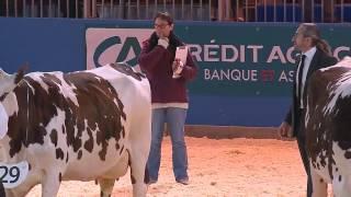 Concours Race Normande (2/3)