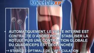 Rééducation du quadriceps et du genou efficacité démontrée